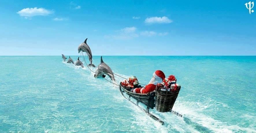Spotkanie świąteczne Stowarzyszenia TO MA SENS